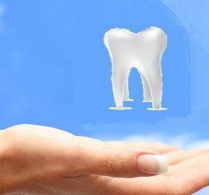 The Best Dental Insurance